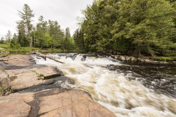 Ausable River Sara Sheehy