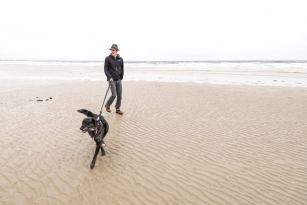 Dog Walk on Wells Beach Sara Sheehy